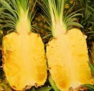 Rozkrojený ananas - kliknutím zobrazíte obrázek v plné velikosti