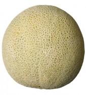 Kokosový