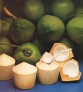 Kokosový ořech - kliknutím zobrazíte obrázek v plné velikosti