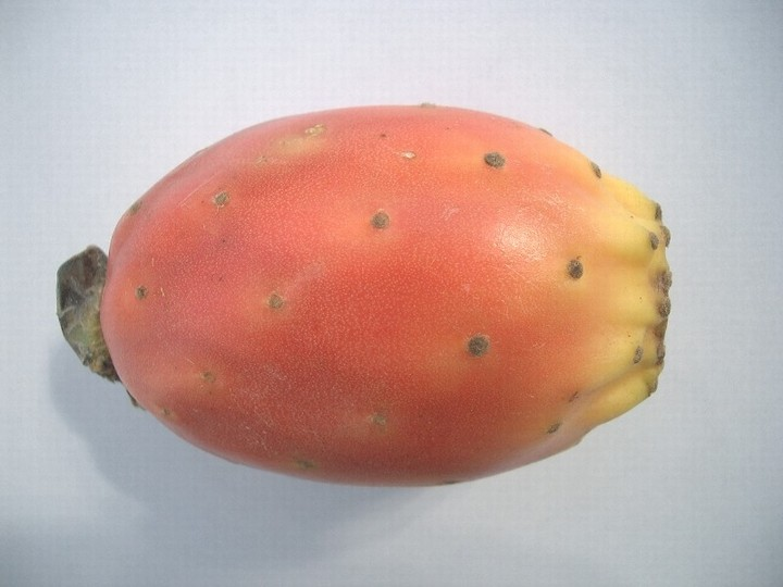 Opuncie - ovoce