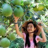 Čínská dívka s pomelem - kliknutím zobrazíte obrázek v plné velikosti