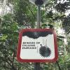 Pozor, padající duriany - kliknutím zobrazíte obrázek v plné velikosti
