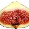 Řez plodem fíkovníku - kliknutím zobrazíte obrázek v plné velikosti