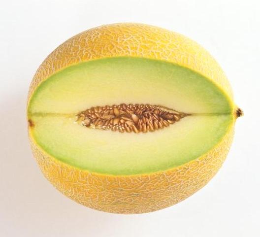 Meloun Gallia
