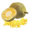 Jackfruit (chlebovník)