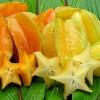 Oranžová a žlutá karambola - kliknutím zobrazíte obrázek v plné velikosti