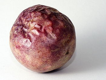 Passiflora Edulis - zralé ovoce