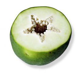 Rozřízlý nezralý plod papáji